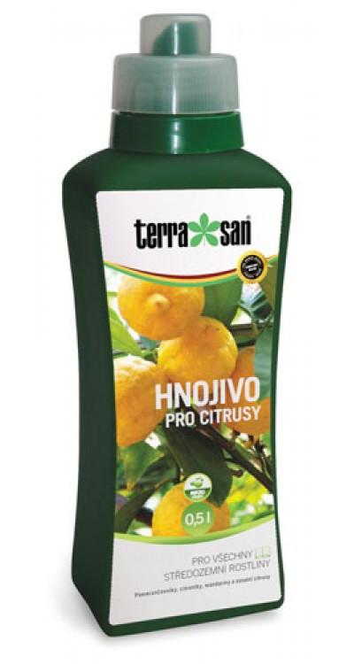 Hnojivo pro citrusy