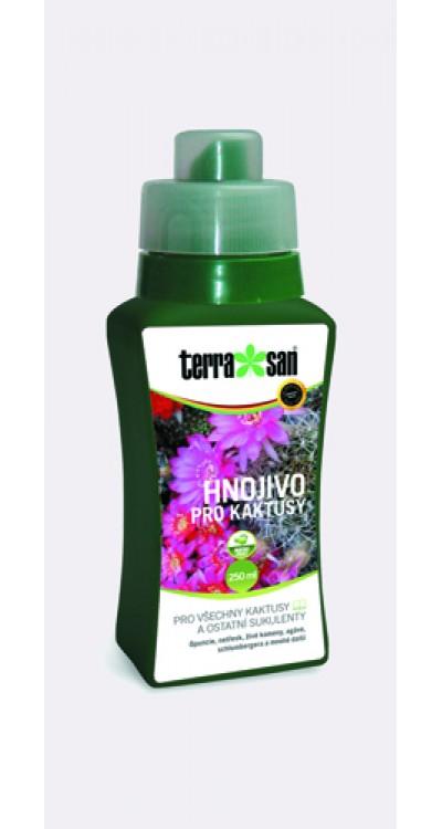 Hnojivo pro kaktusy