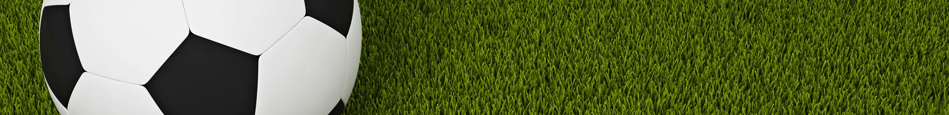 Trávníková hnojiva Landscaper Pro