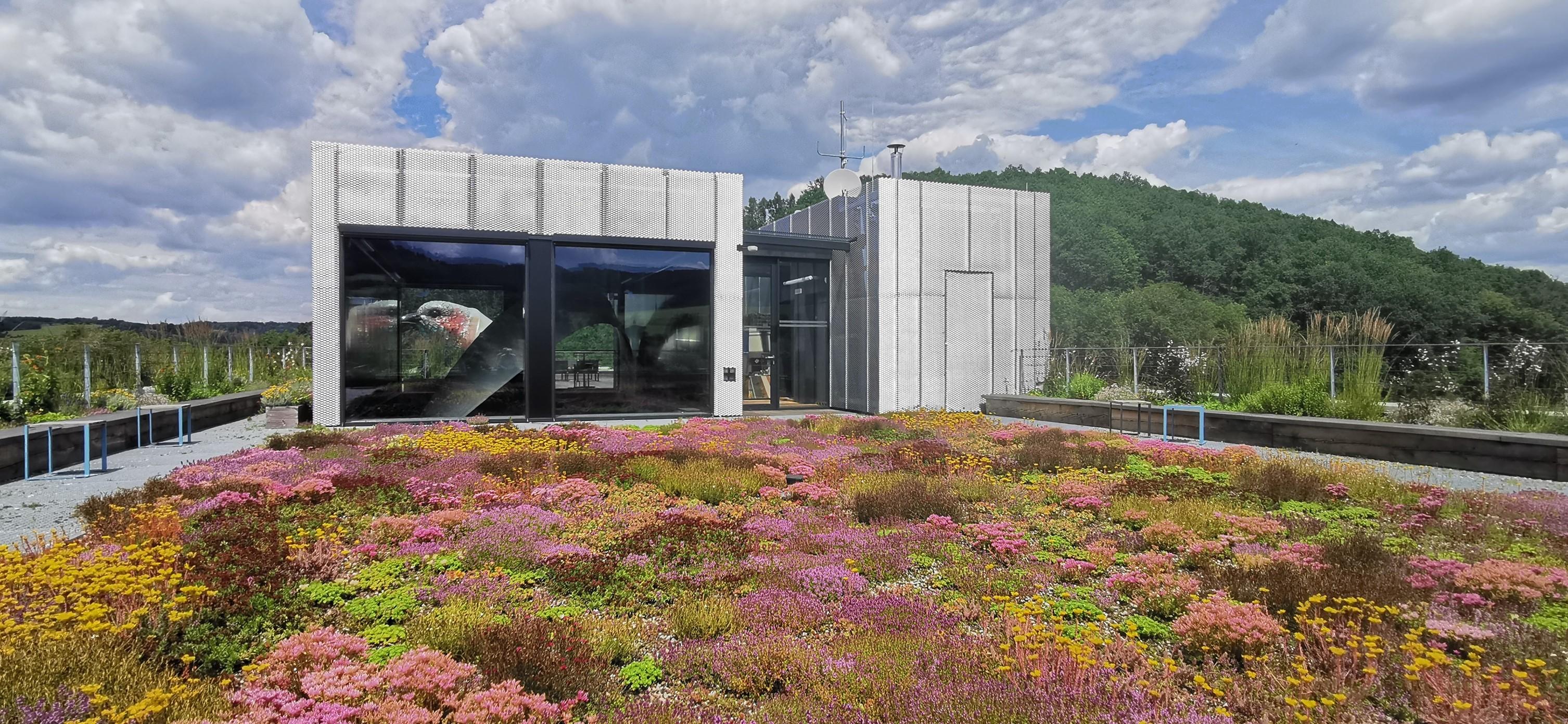 Soutěž Zelená střecha roku 2021